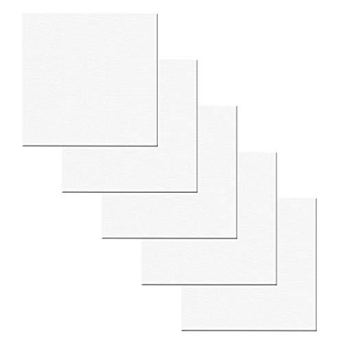 Jinlaili 5PCS Lienzos para Pintar, Lienzos Enmarcados, Panel de Lona, Paneles de lienzo para pintar, algodón Lienzo y Bastidor en Blanco, Lienzo con Bastidor para Pintura Dibujo (20 * 20cm)