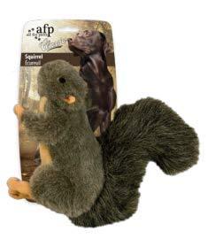 Classic - Squirrel  S