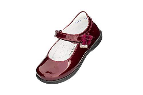 Reviews de Coloso Zapatos los 5 más buscados. 12