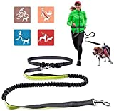 Beliefing Jogging Hundeleine, Upgrade-freihändige Hundeleine mit zwei Bungees, lange Nylon-Hundeleine mit verstellbarem Taillengürtel zum Laufen