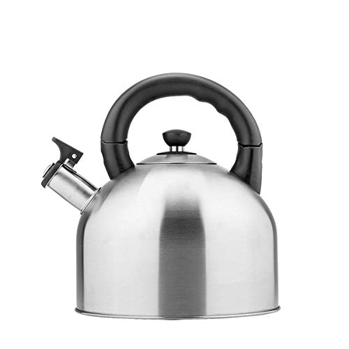 LUISONG FANMENGY Hervidor de agua de 4 L, tetera de acero inoxidable 304, cafetera, tetera, regalo, tetera multifuncional plateada (capacidad: 4 L)