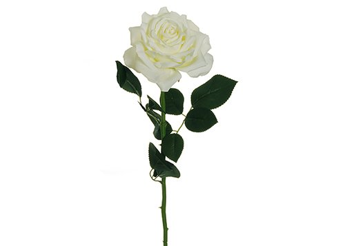 Rose blanche Charlotte haute 76 cm Fleurs Artificielles