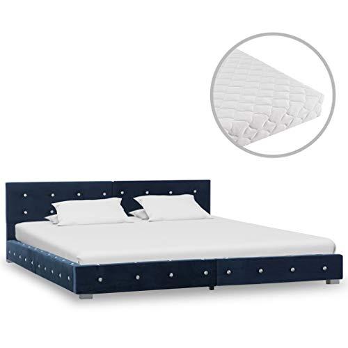 vidaXL Bed met Matras Fluweel Blauw 160x200 cm Bedframe Ledikant Bedden Frame