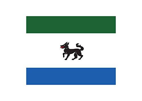 magFlags Bandera Large Oficial Ayuntamiento Peque Zamora | Bandera Paisaje | 1.35m² | 90x150cm