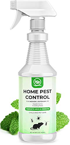 NATURAL OUST Peppermint Oil Mouse Repellent Spray - Roach Ant Spider Bug Insect Killer - Eco Friendly Pest Control to Repel Mice - Humane Repeller Alternative to Trap