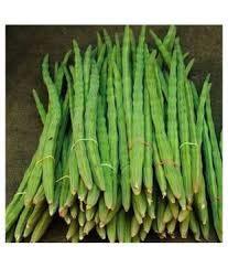 Alick 25 Semillas de Vegetales de Palillo de Moringa Verde.