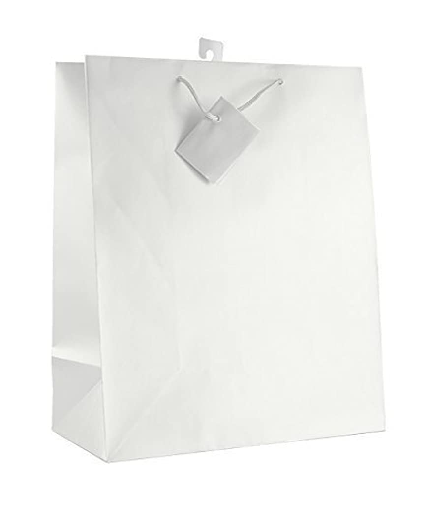 12-PC Solid Color Gift Bags, Matt Laminated, White Color by Paper Impression