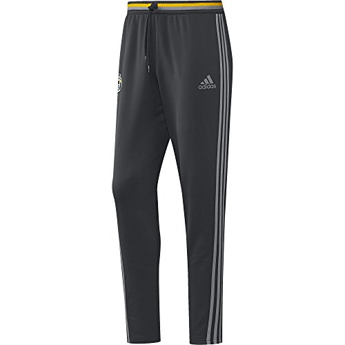 adidas Herren Juventus Turin Trainingshose, Dark Grey/Solid Grey/Collegiate Gold, S