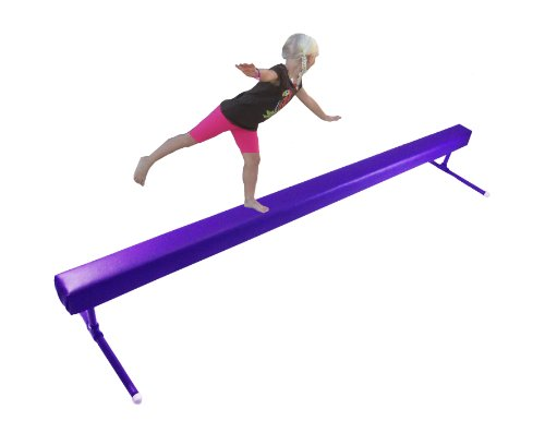Balance Beam Purple 8 Foot Long 1 Foot High