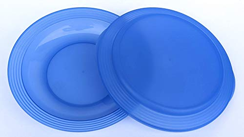 Tupperware Impressions Double Plate Blue