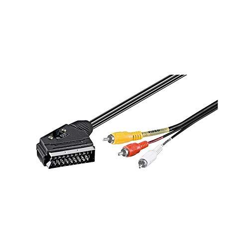 Wentronic - Cable de audio y vídeo con euroconector y conectores RCA...