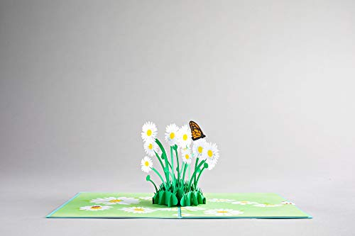 Lovepop Daisy Patch Pop Up Card - 3D Card, Easter Pop Up Card,Mother's Day Card, Spring Card, Card for Mom, Mom Card, Greeting Card, Card for Wife, Flower Card, Appreciation Card Photo #2