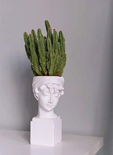 FunSpace - Juego de brochas de maquillaje, diseño de estatua romana griega, ideal como regalo para decoración del hogar u oficina (30 x 15 cm)
