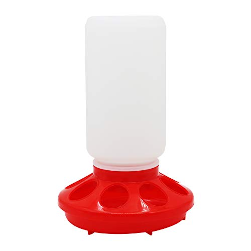 Chick Feeder, 1 Liter Capacity Jar Chicken Feeder Automatic Poultry Feeder for Birds Pigeon Quail (Red and White)
