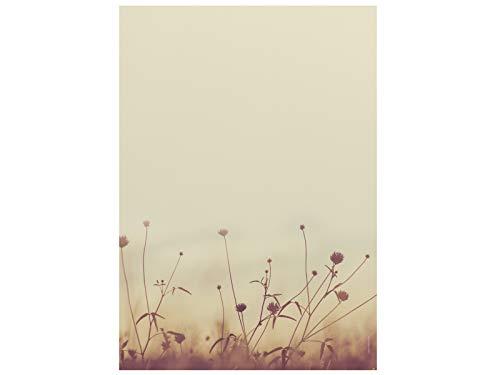 Briefpapier | Herbstwiese in der Sonne | 20 Blatt Herbstliches Motivpapier DIN A4