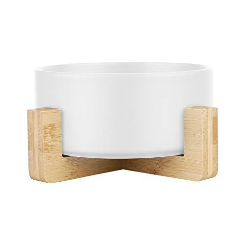 Maceta de cerámica para suculentas con soporte, Richaa de 15,6 cm redondo para suculentas o suculentas macetero para interior y exterior (blanco)