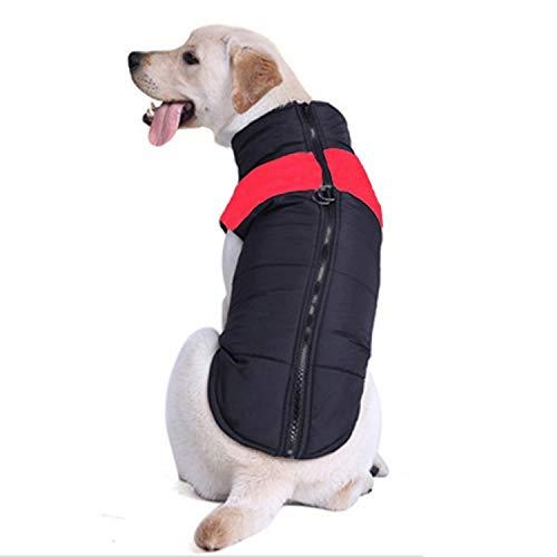 Tuzi Qiuge Haustierkleidung Hund Baumwolle Weste Skianzug (orange), Haustierkleidung (Color : Red)