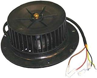 Amazon.es: motor campana extractora