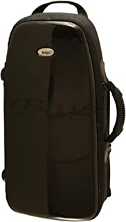 Amazon.com: $200 & Above - Bags & Cases / Brass Accessories ...