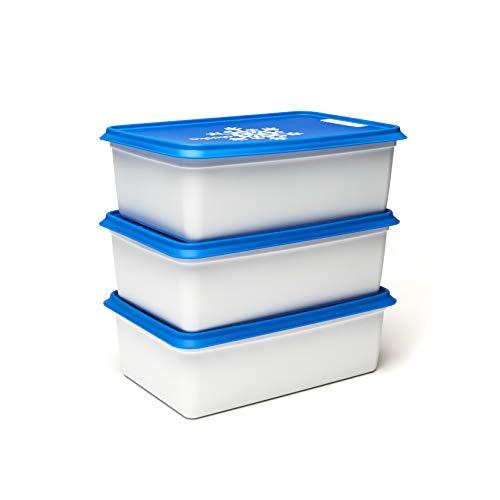 Amuse Gefrierdose, Kunststoff (PP), weiß/blau, 3 x 2000 ml