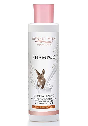 Pharmaid Donkey Milk Treasures Shampoo 250 ml | Hair Care