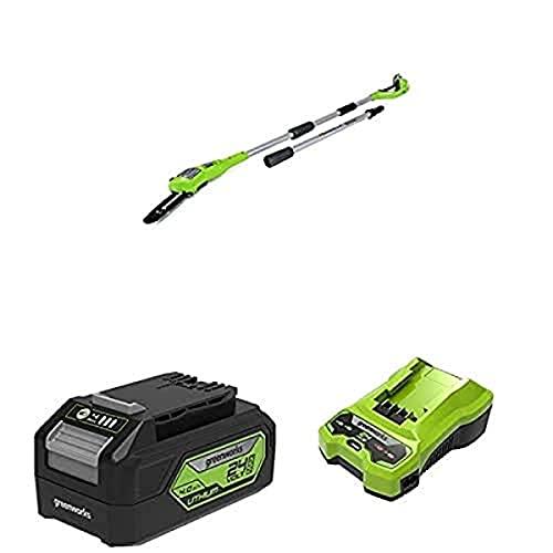 Greenworks Akku-Hochentaster G24PS20 + Greenworks Tools Akku G24B4 2.Generation + Greenworks Tools Akku-Ladegerät G24C (Li-Ion 24 V 48W Output passend für alle Akkus der 24 V Greenworks Serie)