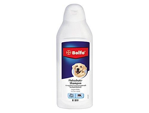 Champú antipulgas Bayer Bolfo