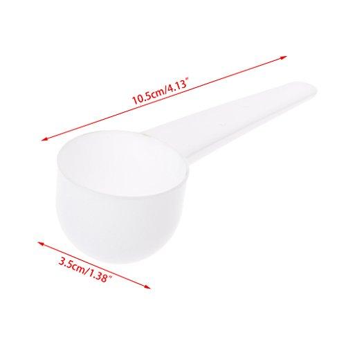 LANDUM 1/3/5/10g Messlöffel Kaffee Protein Milch Pulver Schaufel Löffel Küchenwerkzeug, Polypropylen, weiß, 10.5×3.5 cm