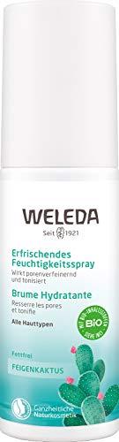 WELEDA Feigenkaktus Erfrischendes Feuchtigkeitsspray, belebendes Naturkosmetik Spray für bis zu 12 Stunden intensiver Feuchtigkeit zur Pflege von müder Haut (1 x 100 ml)