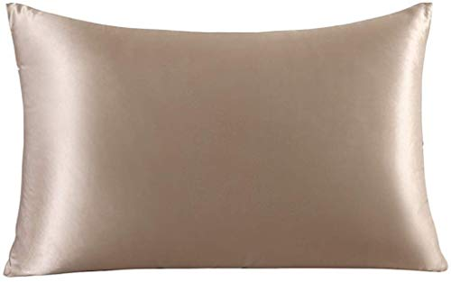 ZIMASILK Funda de Almohada de Seda de Morera 100% para el Cabello y la Piel, Ambos Lados de Seda de Momme 19, 1pc (Estándar 50x75 cm,Marrón grisáceo