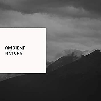 Ambient Nature, Vol. 21