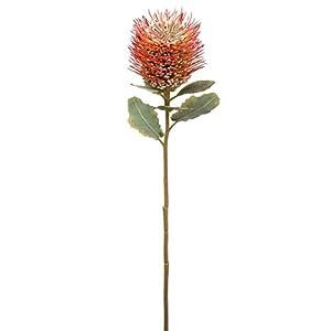 22″ Protea Silk Flower Stem -Orange (Pack of 12)