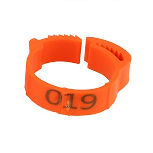 100 anillos de sujeción Poultry para las piernas, ajustables, anillo para el pie de gallina, anillo de identificación de aves de corral con clips para anillos de granja y ranch (naranja)