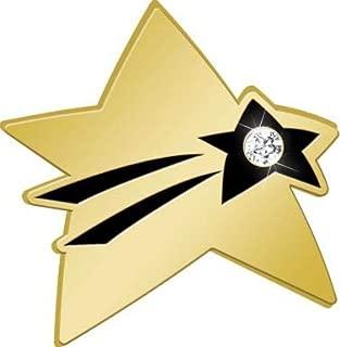 star pins awards