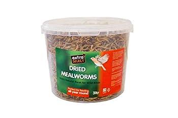Extra Select Truffe de vers de farine séchée, nourriture pour oiseaux sauvages, 3 litres
