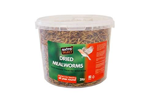 Extra Select Niger Seed Wild Vogelfutter, Mehlwürmer, 3 l