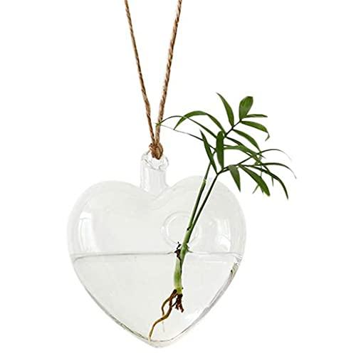 illombo Hängende Glasvase in Herzform für Hydrokulturpflanzen, Heim- und Gartendekoration
