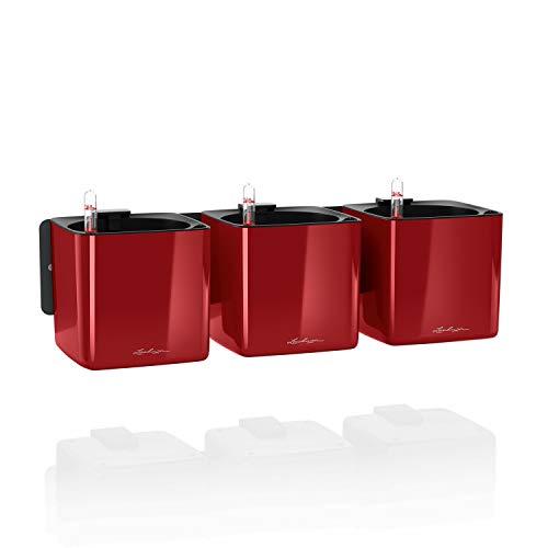 LECHUZA Green Wall Home Kit - Maceta de riego automático Brillante para Interiores y Interiores,...