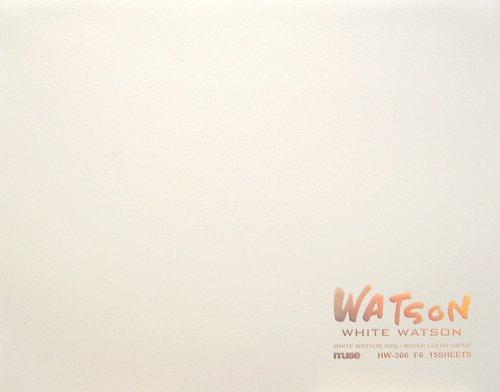 ミューズ 水彩紙 ホワイトワトソンブロック F6 300g ホワイト 15枚入り HW-306 F6