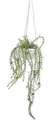 Línea Déco | Lámpara colgante de planta grasa recae artificial, maceta blanca | 65 cm | planta verde artificial | planta grasa | para colgar | Decoración de interior | casa u oficina