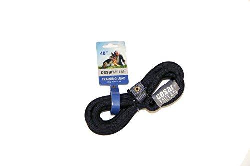 Cesar Millan Leine - Trainingsleine für Hunde - 2in1 Halsband Hund und Leine - Slip Lead - Retrieverleine mit integrierter Halsung, Wetterfestes Tau - Länge 120cm Durchmesser 1,2cm Farbe Schwarz