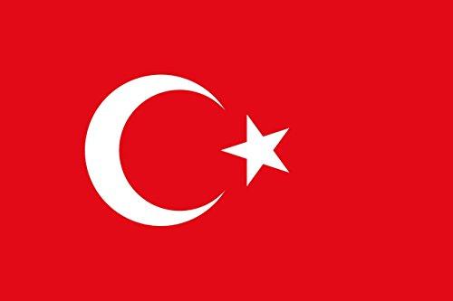 世界の 国旗 スポーツ 観戦 応援 各国 料理 日本 アメリカ イギリス フランス イタリア etc 90㎝×150㎝ (トルコ)