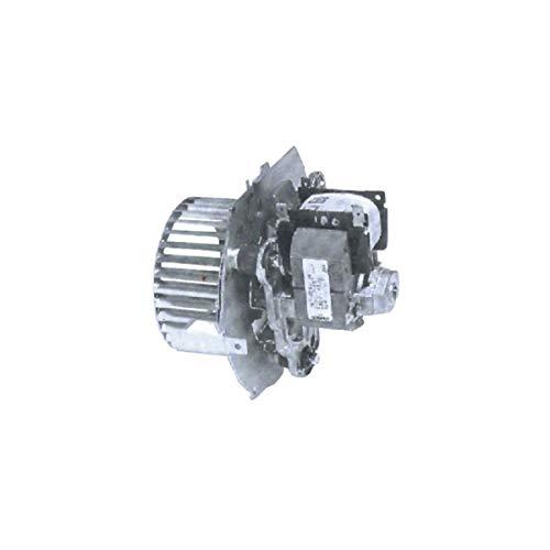 Motor turbina Extractor Caldera Roca BRITONY FF 60058027