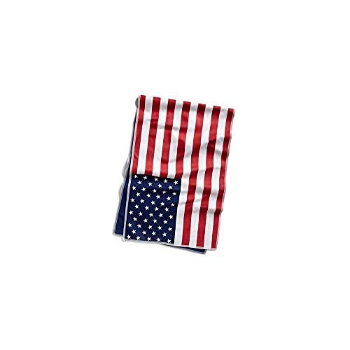 Mission HydroActive - Toalla de refrigeración (microfibra, tamaño grande, bandera de Estados Unidos, 10.0 x 32.8in)