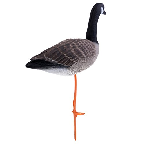 Homyl 3D Lifelike Full Body Goose, Greenhand Hunting Decoys Simulation Goose Decoys Lawn Garden Decoration - Standing Goose