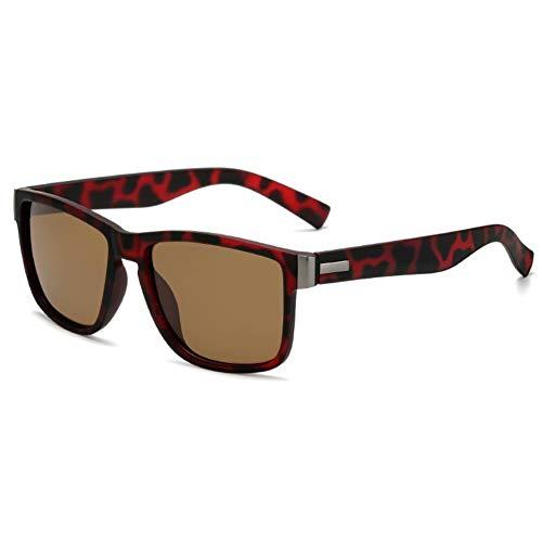 DovSnnx Gafas De Sol Unisex para Hombres Y Mujers Polarizadas Protección Uv400 Clásico Vintage Moda Sunglasses Lentes De Té con Montura De Leopardo