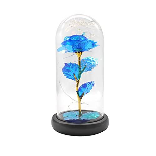 KINHARD Encantadoras Rosas Azules, la Bella y la Bestia Decoración de Rosas, Romántica Lámpara de Rosas con Cúpula de Cristal, la Rosa Eterna es un Cálido Regalo para Aniversario y Cumpleaños