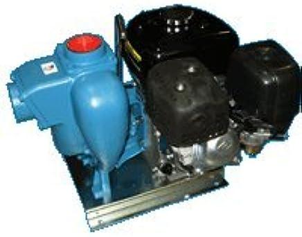 MP Pumps 36456 FLOMAX8 2