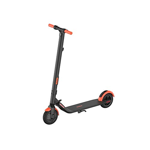 Segway Ninebot ES1L Electric Kick Scooter, Lightweight and...