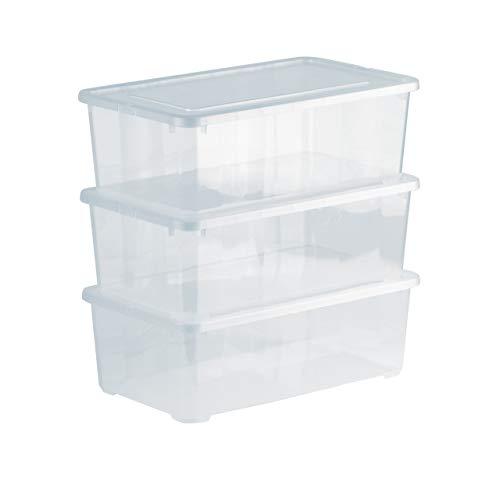Grizzly 3 x Caja de Almacenaje con Tapa de 5 L - Cajón de Plástico Transparente Apilable - Caja Multiusos Organizador de Armarios para Ordenación de Ropa